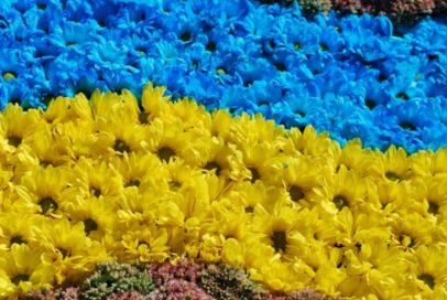 """""""Бахмут Український"""" шукає інформацію про загиблих в цій війні земляків"""